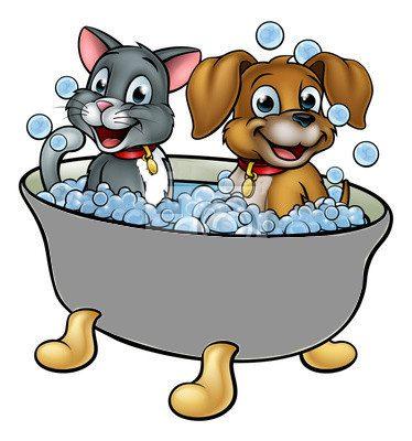 dessin-anime-chat-et-chien-a-bath-400-107354582.jpg