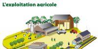 exploitation-agricole.jpg